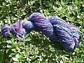 Blue red violet bfl 001
