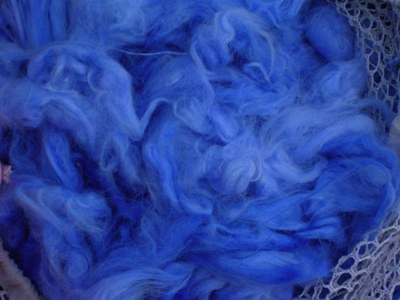 Dyed angora 002