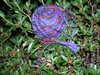 Knitting_055