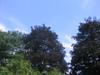 Saturday_sky_003
